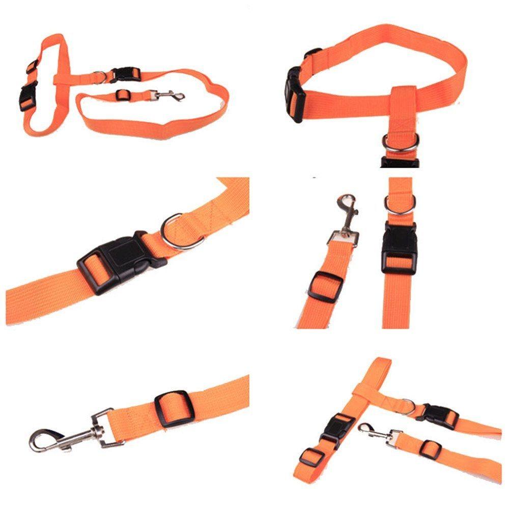 Nylon Running Pet Dog Leash Rope Training Slip Adjustable Traction Collar Rope Chain
