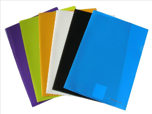 Customized L Type Folder /File Folder E310