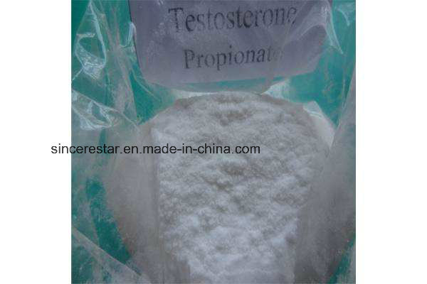 Bodybuilding Steroid Hormone Testosterone Propionate