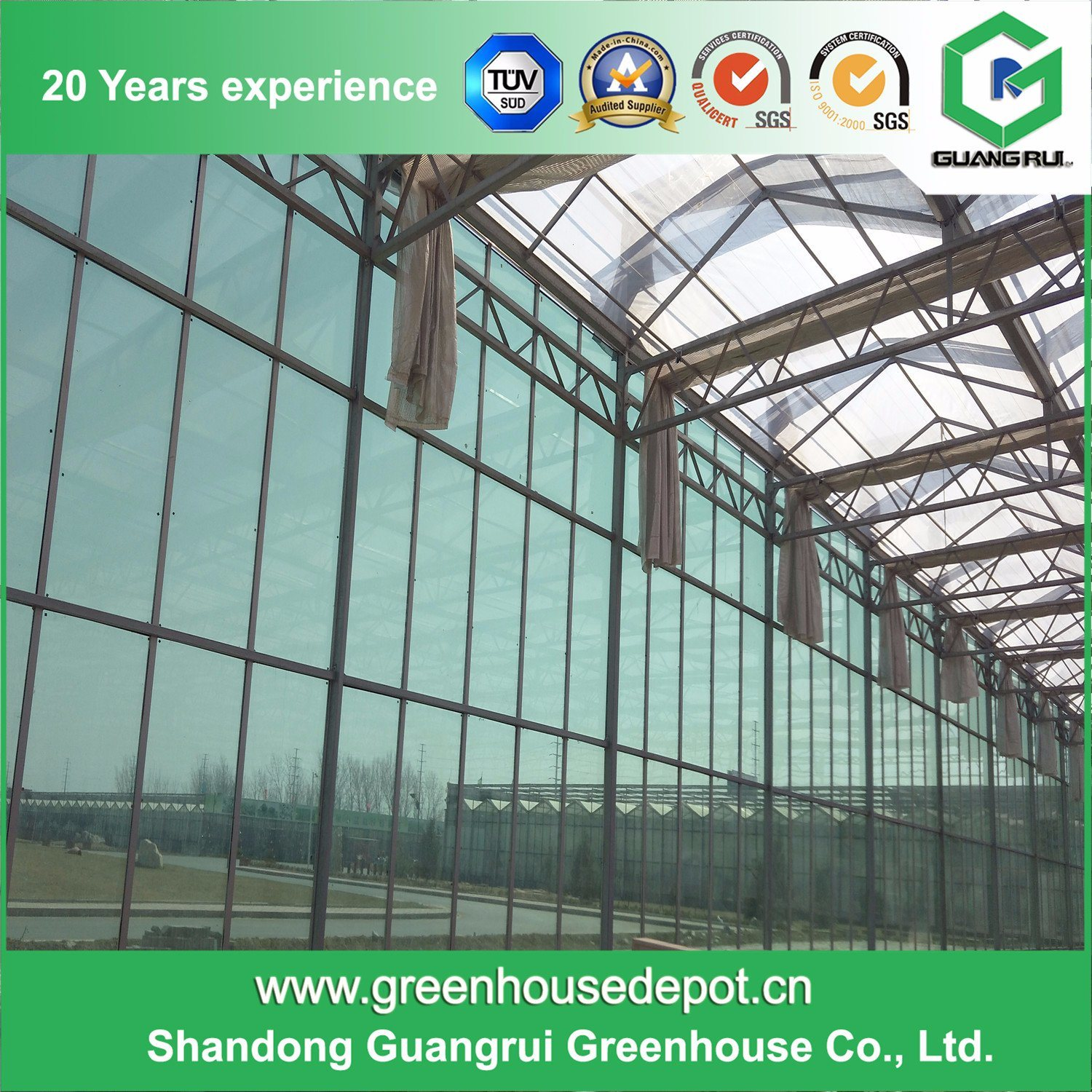High Quality Glass Venlo Greenhouse with Cooling System