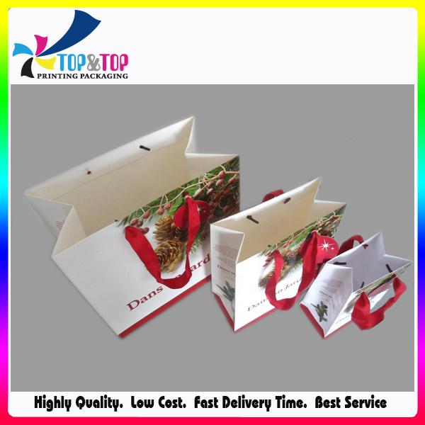 Fashional Christmas Paper Gift Bag with Handle