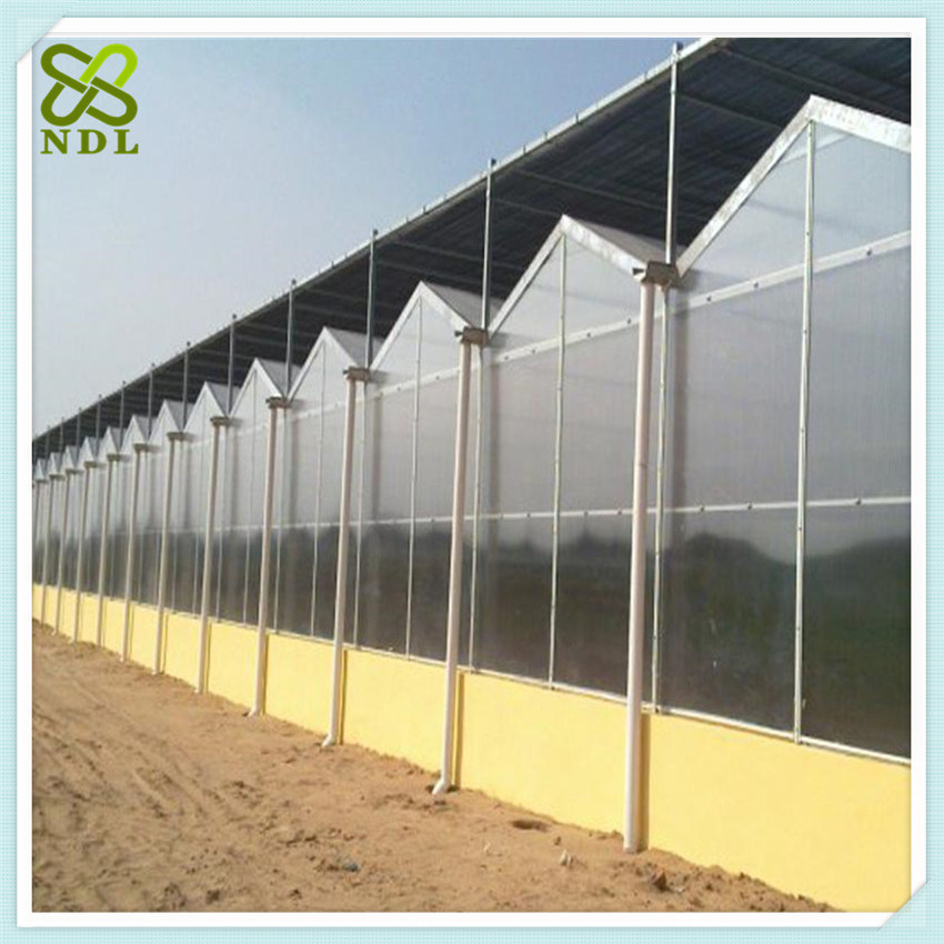 Multi Span Agricultural PC Greenhouse with Thermal Blanket