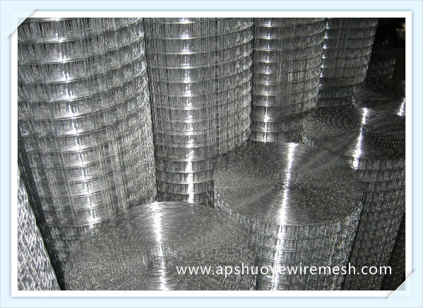 SUS304 Stainless Steel Welded Wire Mesh with SGS Certification