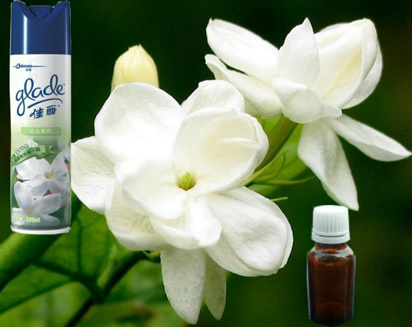 Jasmine Fragrance for Air Freshener, Flavor Fragace for Air Fragrance