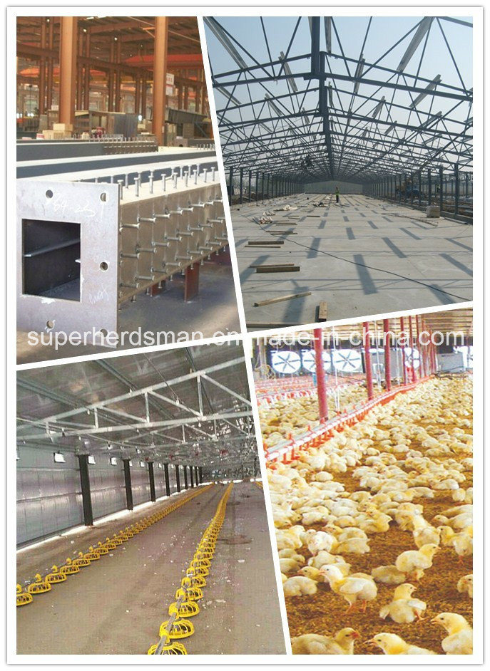Prefab Steel Structure Poultry Farm for Broiler