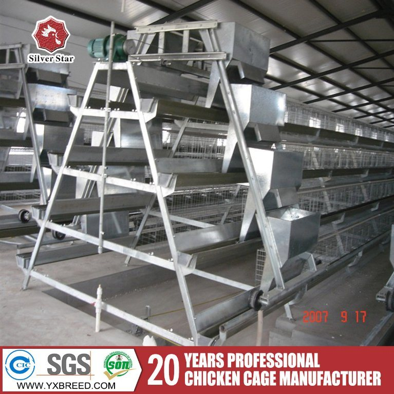 Steel Wire Mesh Brids Battery Chicken Layer Cages for Sale in Jordan