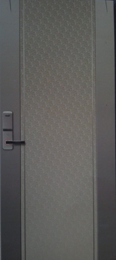 High end interior steel door china steel door for High end entry doors