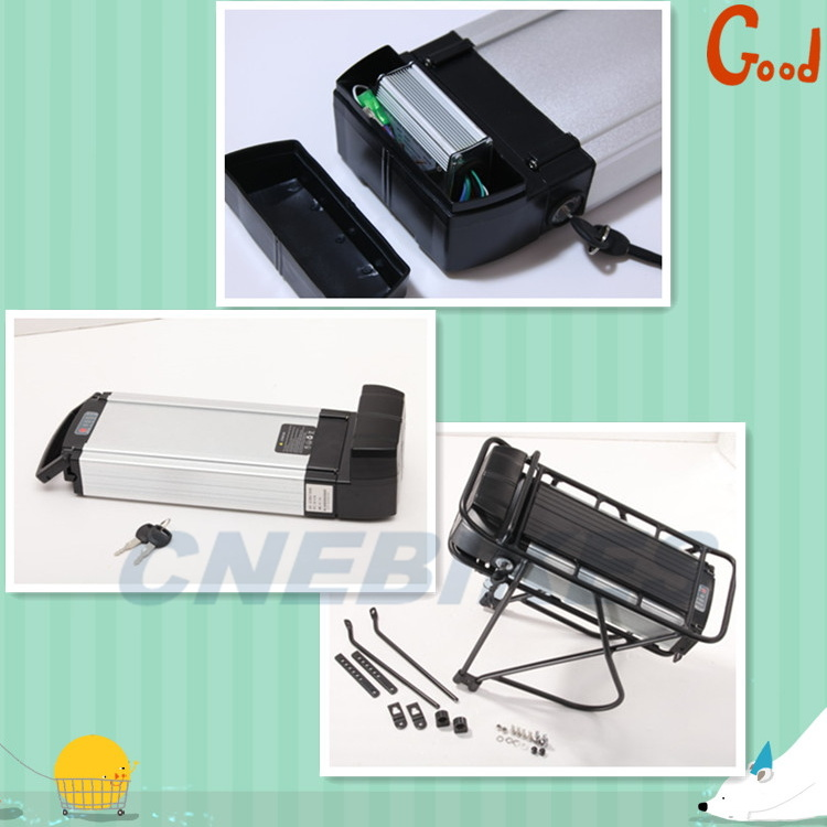 36V 10ah LiFePO4 Battery for Electric Bike