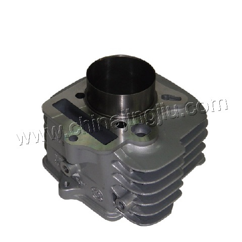 Motorcycle Cylinder Block (WAVE 100)