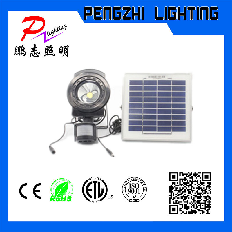 PIR Rechargeable LED Flood Light with Solar Panel