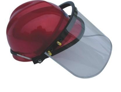 Face Shield (305)