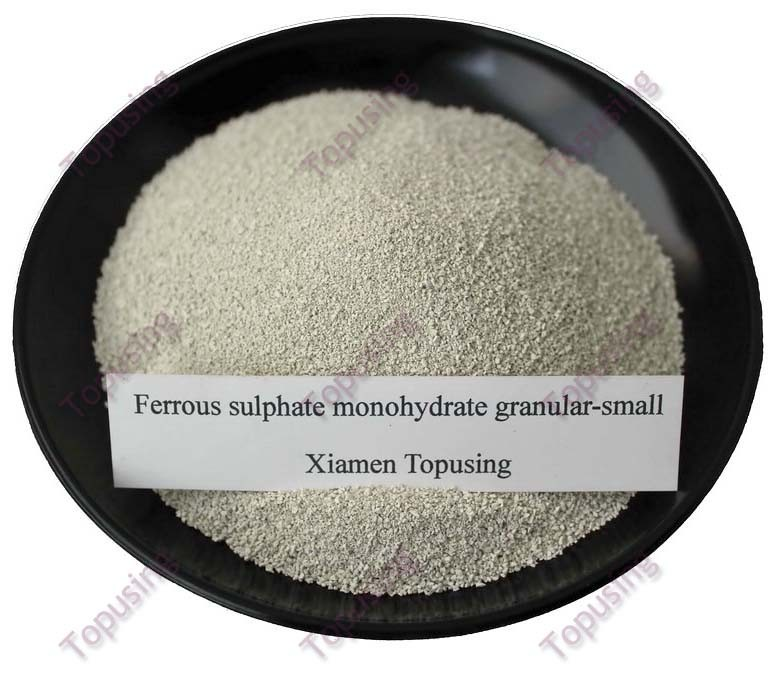 Ferrous Sulphate Monohydrate Small Granular Fe30%