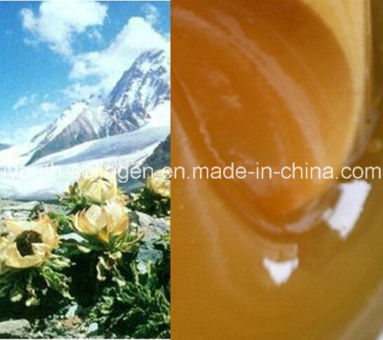 Top Honey 100%Natural Organic Wild Chinese Herbal Medicine Honey, Precious Rare, No Antibiotics,No Pesticides,No Pathogenic Bacteria, Prolong Life,Health Food