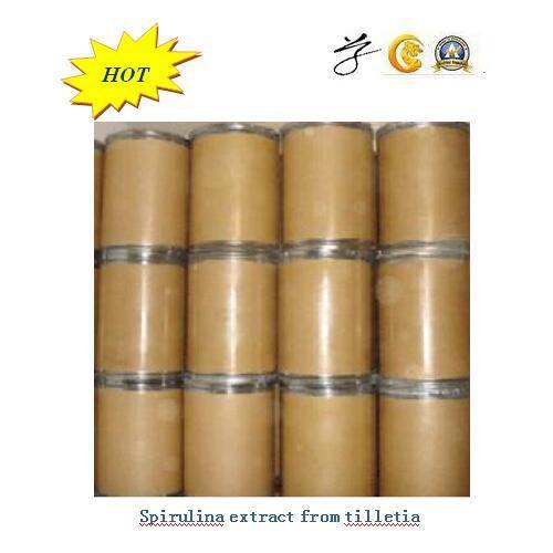 25kg/Keg Spirulina Powder From Tilletia