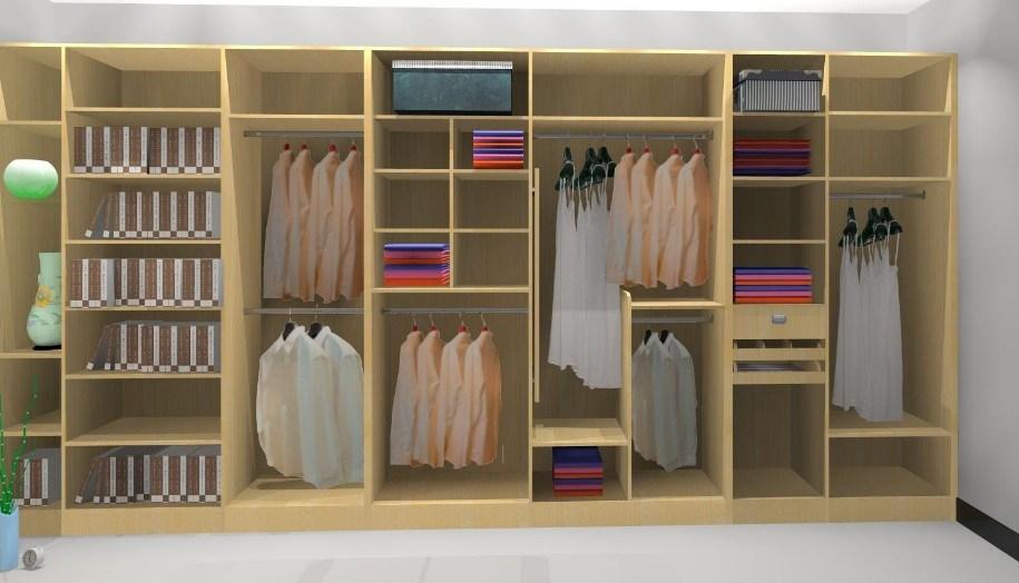 Solid Wood Custom Walk in Closet (YB1105)