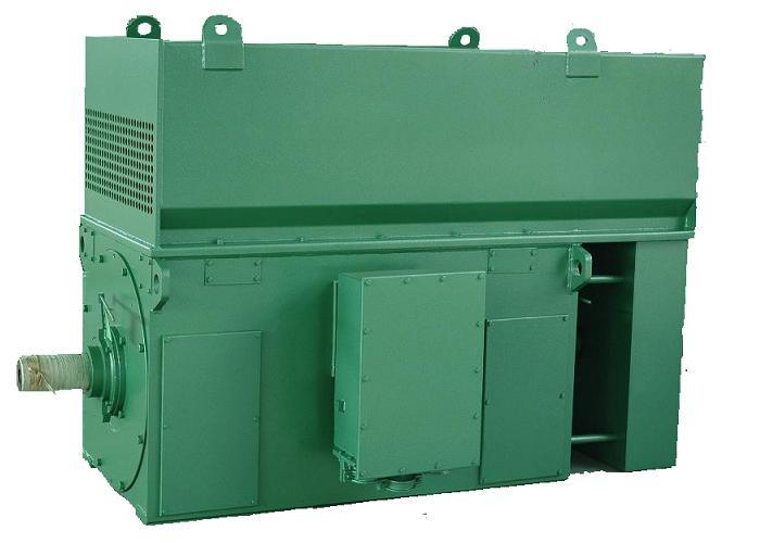 Asynchronous Motors/ Electric Motor/ Ht Motor/ Hv Motor