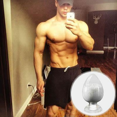 Steroid Muscle Building Testosterone Isocaproate with Anabolic Steroid Powder