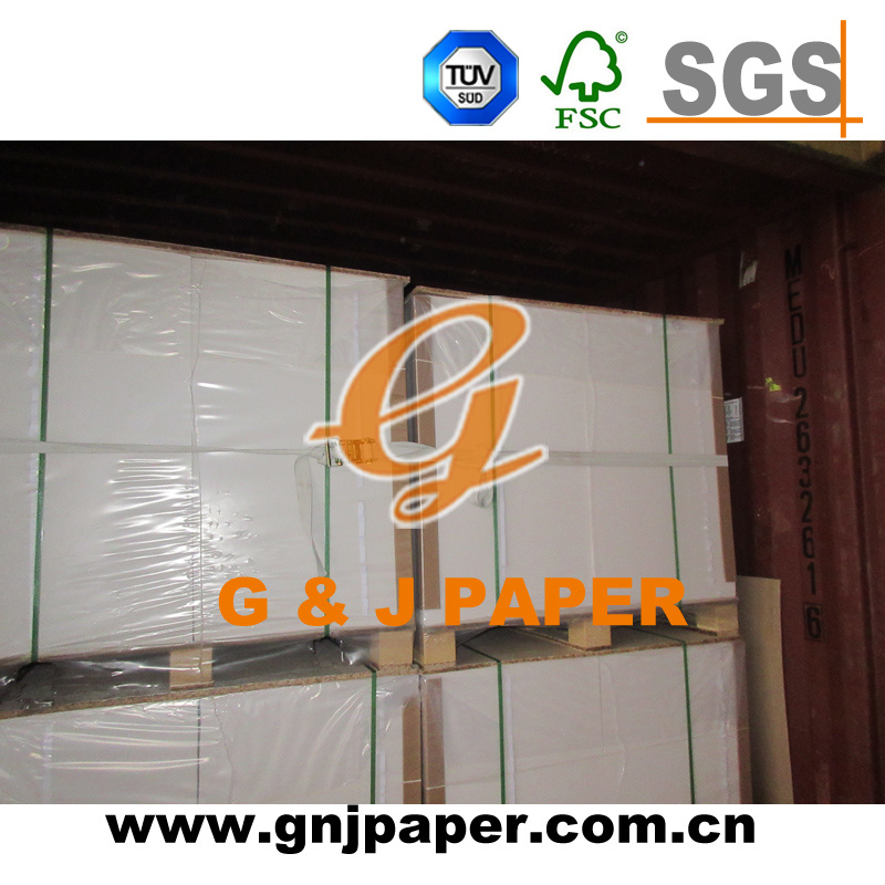 Excellen Quality Ivory Paper Board Used on Paper Bags Making
