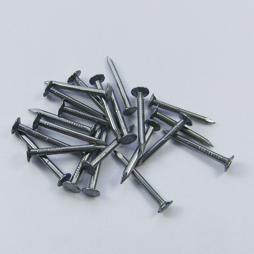 2 Inches Bwg12 Roofing Nail China Roofing Nail Flat