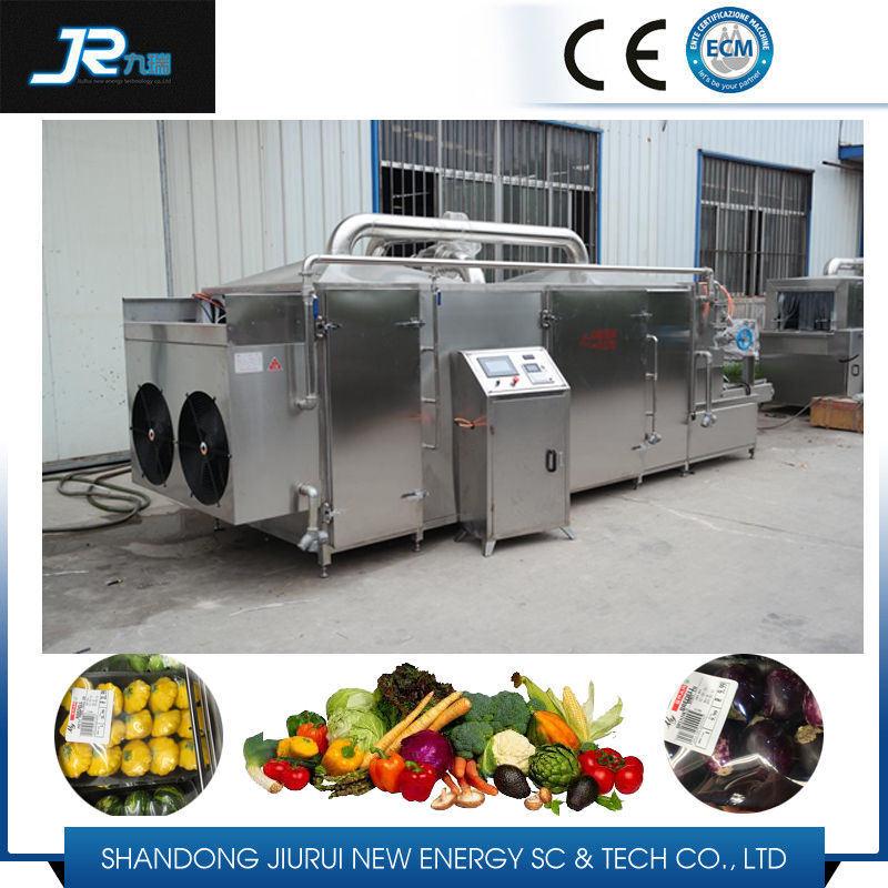 Raisin Washing Drying Machine