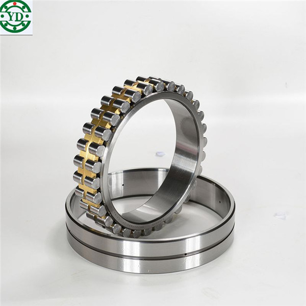 NSK SKF 30*55*19mm Double Row Cylindrical Roller Bearing Nn3006-as-K-M-Sp