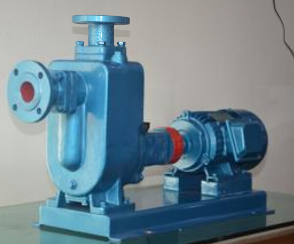 Zw Self Suction Sewage and Self-Priming Water Pump