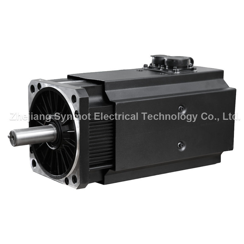 AC Permanent Magnet Synchronous Electric Motor