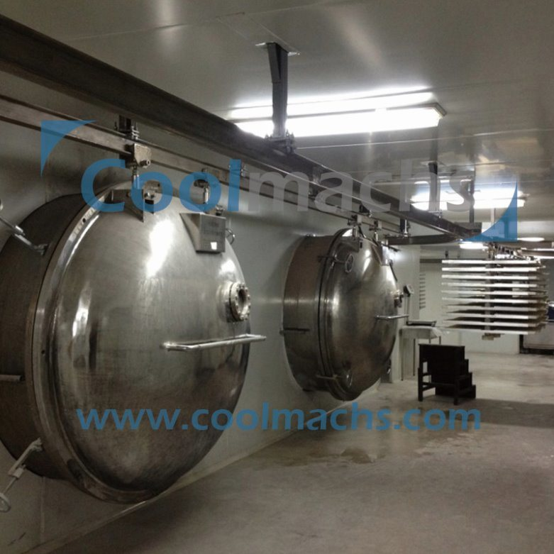 Vegetable Vacuum Freeze Dryer/Freezing and Drying Equipment