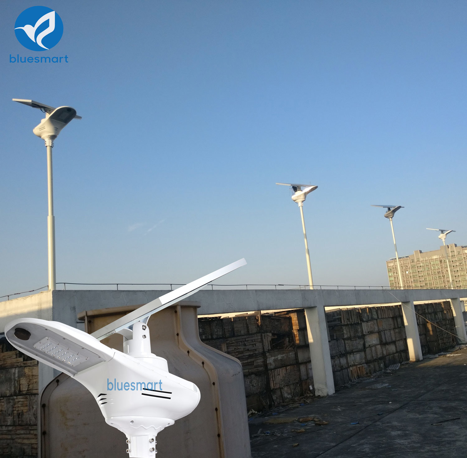 Manufacturer Bluesmart Integrated Solar LED Street Light with Solar Panel