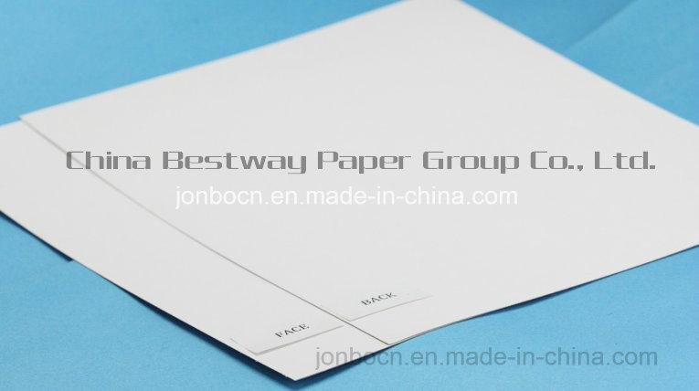 White Coated Duplex White Back Cardboard/Triplex