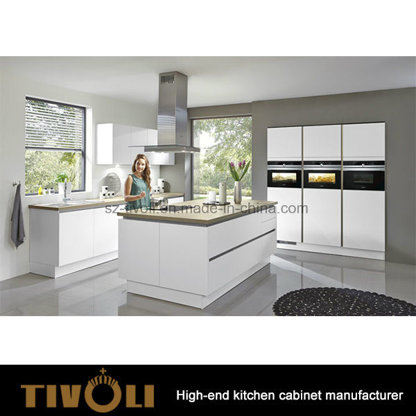 Contemporary Cabinets Ready Made Cupboards for Kitchen Cabinets New Fashion Tivo-0105h