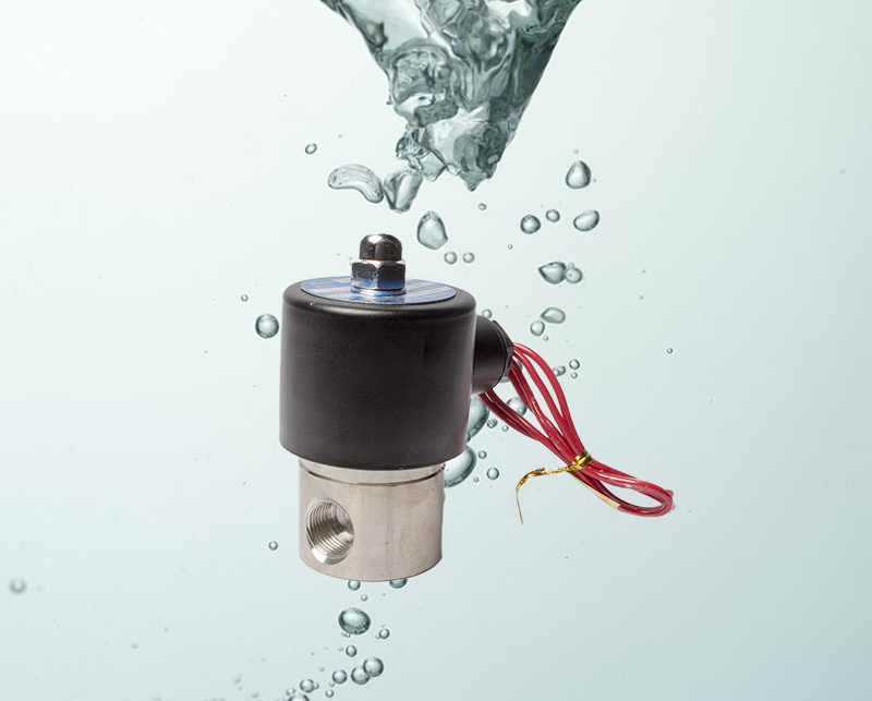 Normally Closed Sstainless Steel 24V Water Solenoid Valve 2s050-10