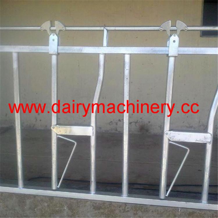Steel Pipe Cattle Headlock Hl-MP08