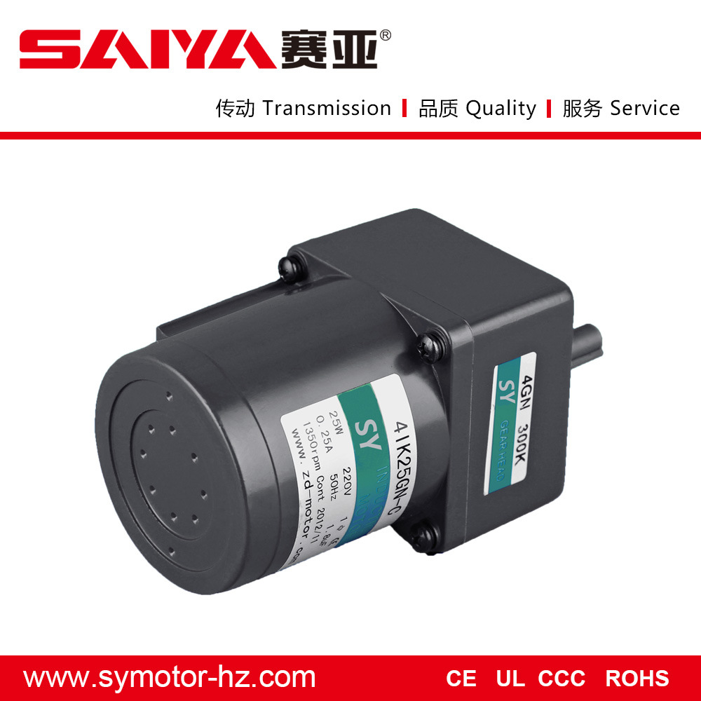 25W General Induction AC Gear Motor Electrical Motor