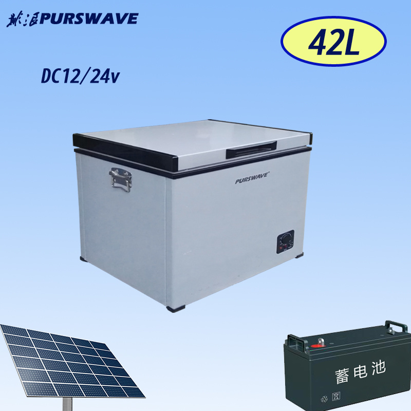 Purswave Bd/Bc-42 42L vehicle DC Portable Refrigerator by Compressor for Camping 12V24V220V110V-25degree Powered by Solar by Battery