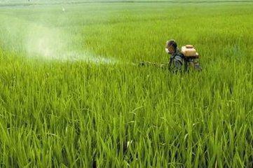 Agrochemical Herbicide Glyphosate 41% Ipa Salt SL