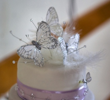 Butterfly Wedding Cake Decorations on Cake Butterfly Decorations   China Wedding Butterfly Butterfly
