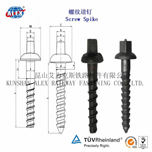 Timber Spike Screw, Railway Fastener Coach Screw Spike