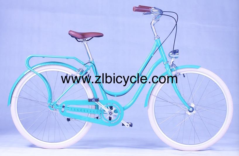 Dutch City Bike