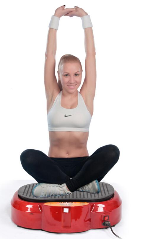 Healthmate Fitness Massager/Vibration Plate/Body Massager (CE RoHS) (HM01-08mA)