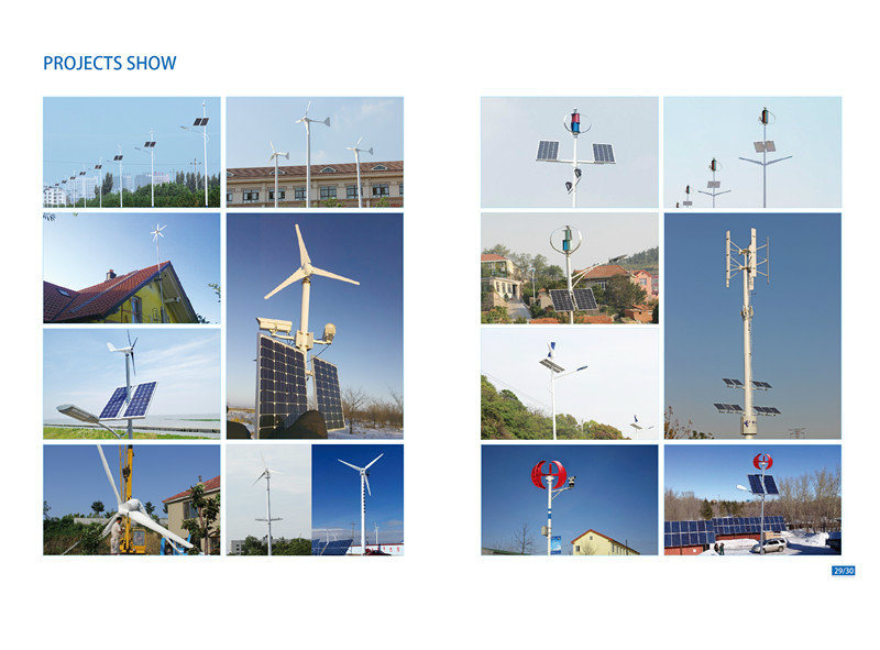 S Type 100W 12V Small Garden Decoration Windmill (SHJ-100S)