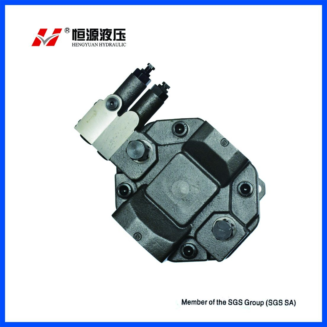 Rexroth Hydraulic Piston Pump Ha10vso28dfr/31r-PPA12n00 for Industrial Application