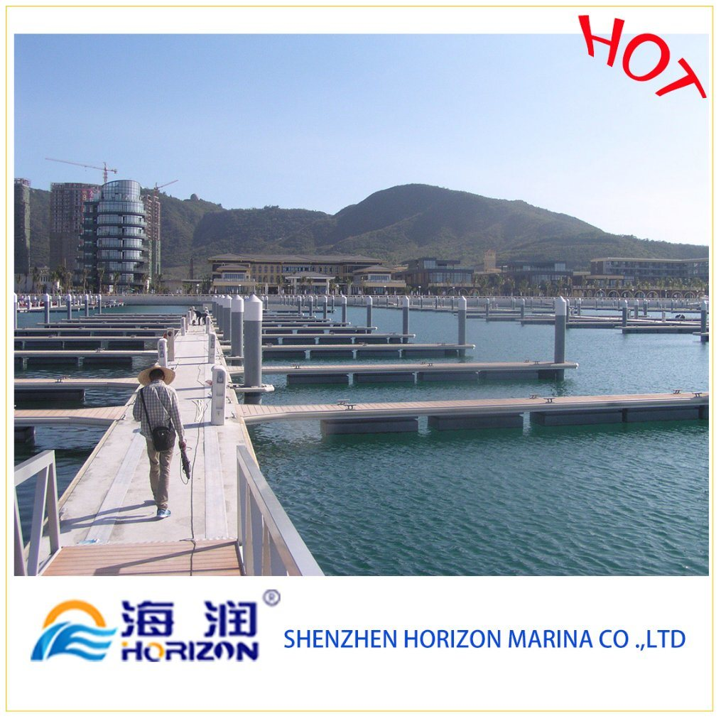 Hot Sale Pile Cap Floating Dock in China