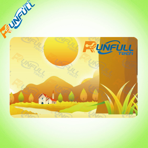 2017 New Design Transparent PVC Card