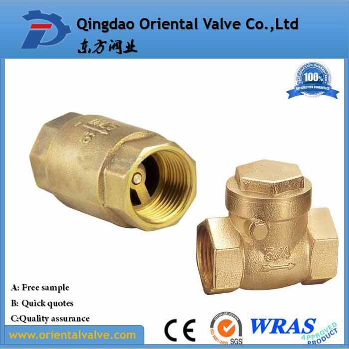Professional Making Ss Spring Europe Standard Brass Non Return Check Valve with Barss Core