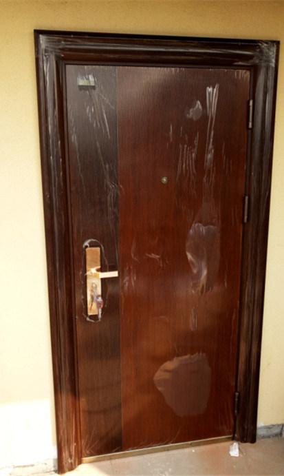 Luxury Steel Door for Commercial Building