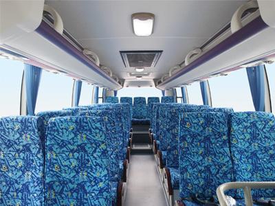 Sunlong Slk6972A Diesel Passenger Bus