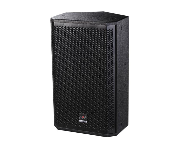 Loudspeaker PRO Audio500W Single 10inch for Multi-Function Room