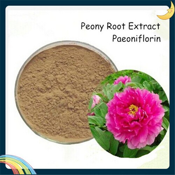 Factory Supply Paeoniflorin for Peony Extract