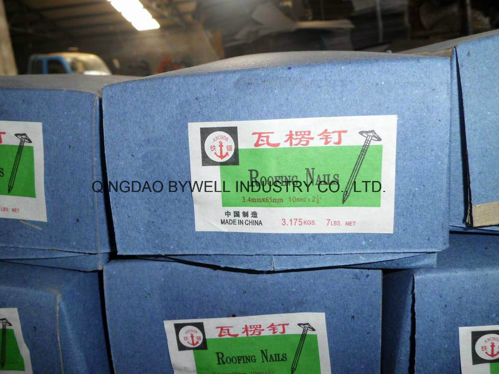 """Galvanized Roofing Nails with Umbrella Head Best Quality (3/4""""-4"""")"""